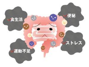 refume・腸内環境の悪化